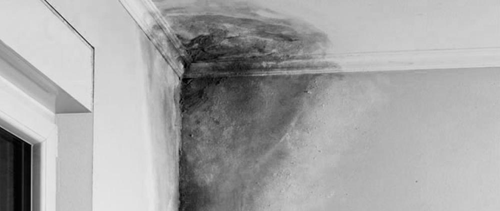 humedades daños por agua hogar seguro indemnización peritaje