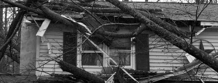 viento seguro daños reclamar cobertura reparación paga